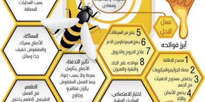 العسل يقاوم السرطان وأمراض القلب