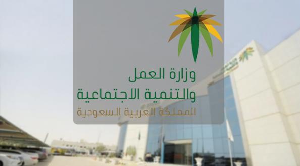 الإعلان عن موعد تطبيق قرار ضوابط الحماية من التعديات السلوكية في بيئة العمل